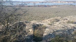 Imagen actual de la necrópolis de Cauvaca.  (Autor: Marisa Herrero)