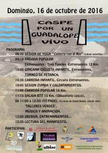 cartel-jornada-guadalope