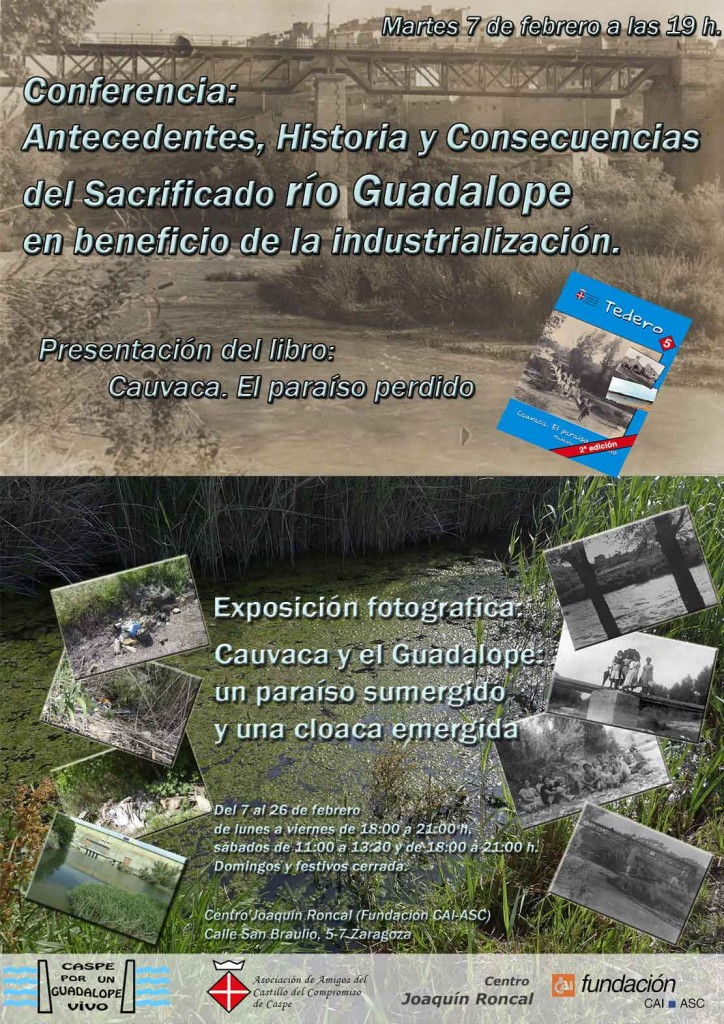 cartel Zaragoza reducido